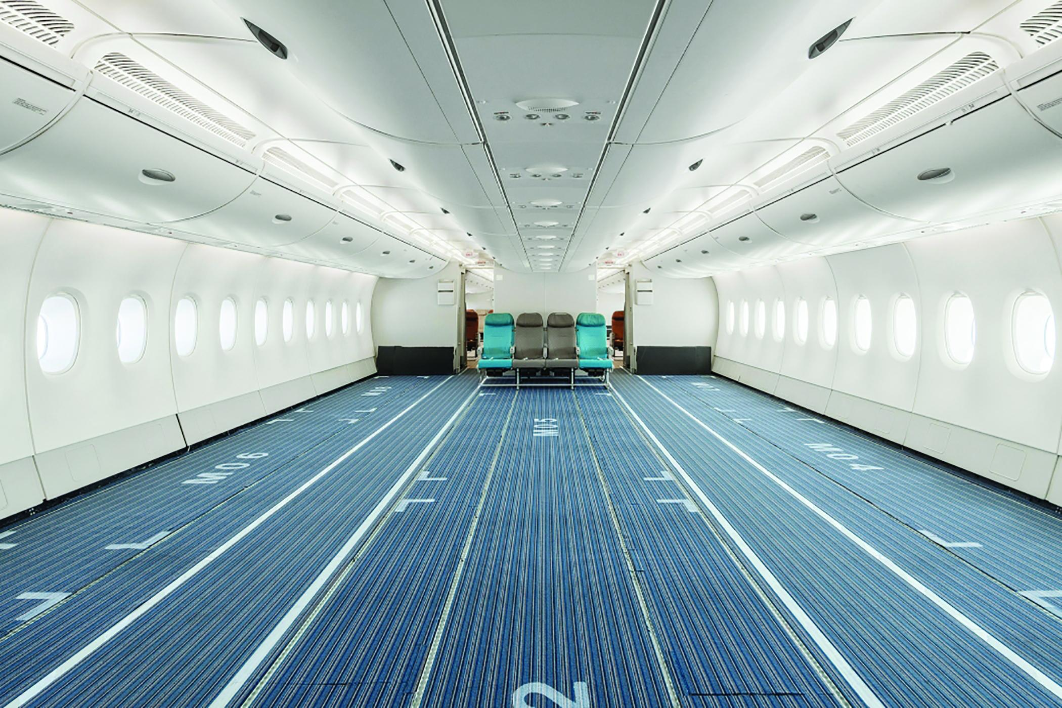 A380 passenger cabin for cargo use