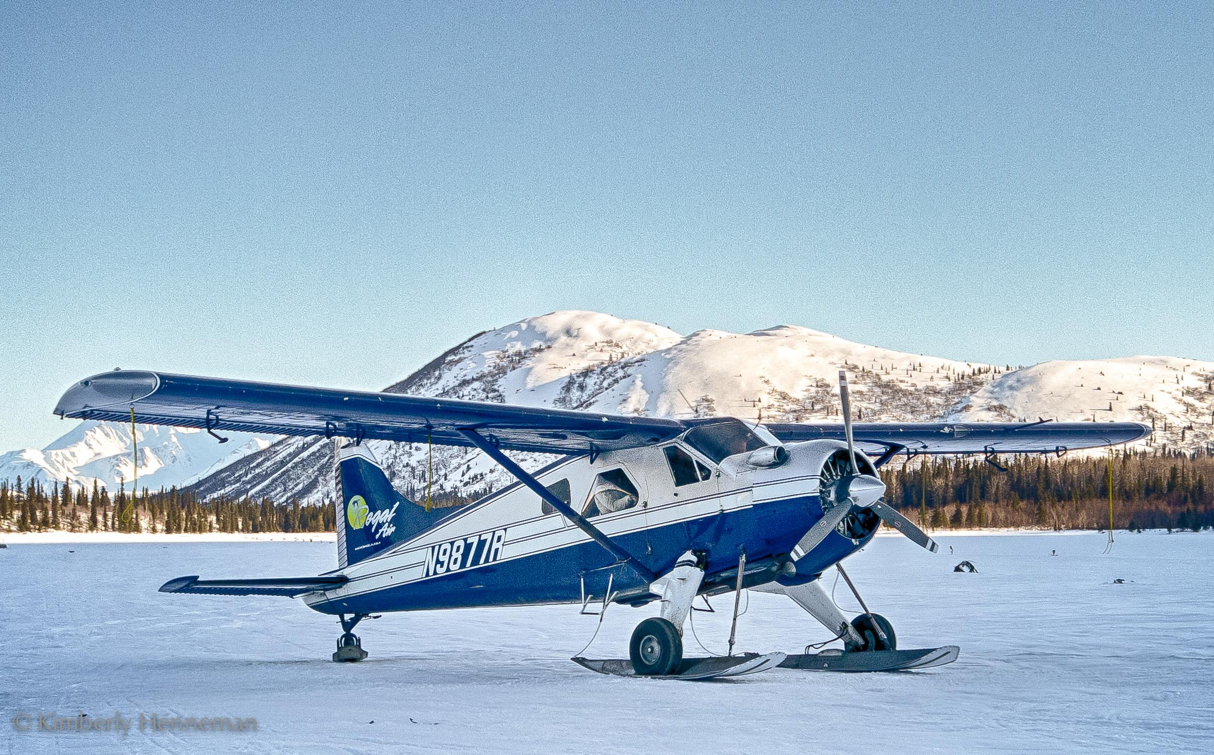 Iditarod Race First Hand: Dogs, Airplanes and 1,000 Miles